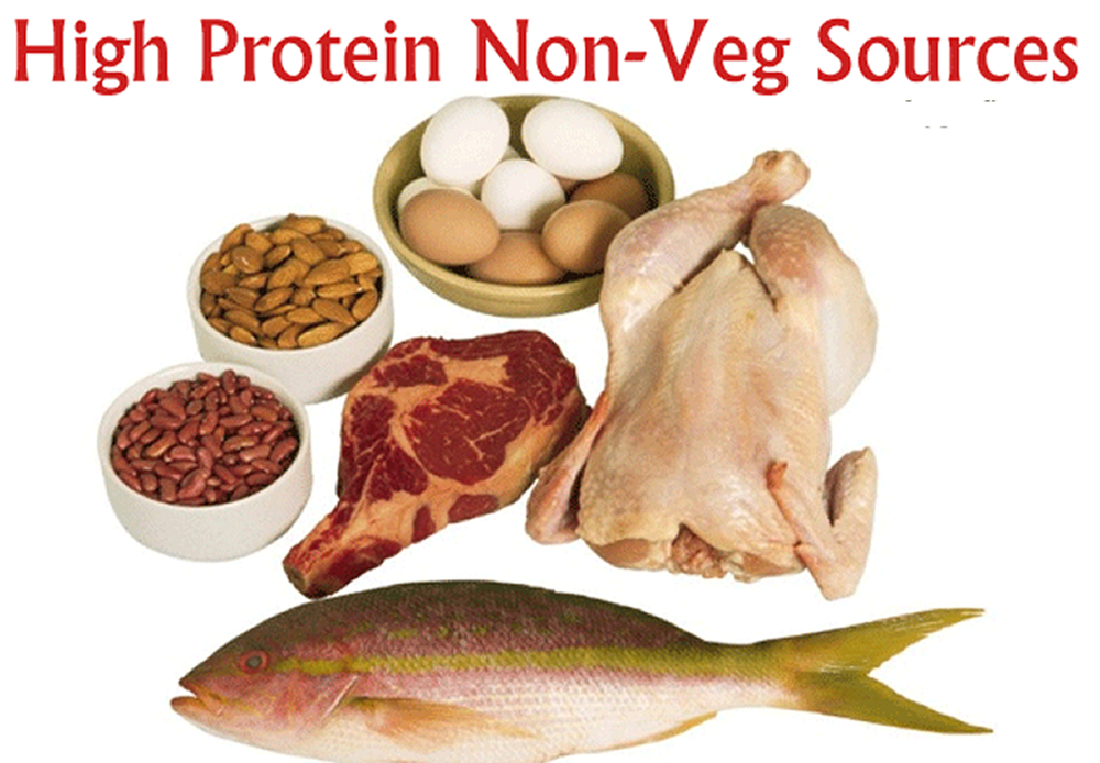 High protein meal plan