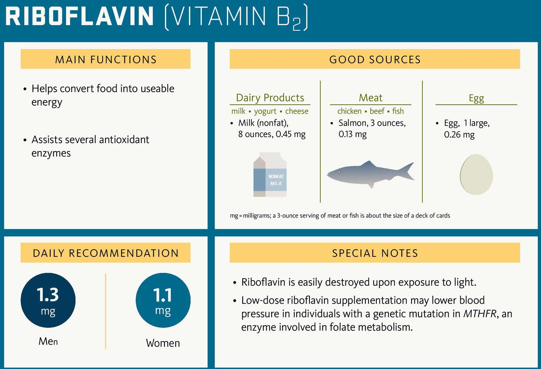 Riboflavin vitamin B2 rich food sources