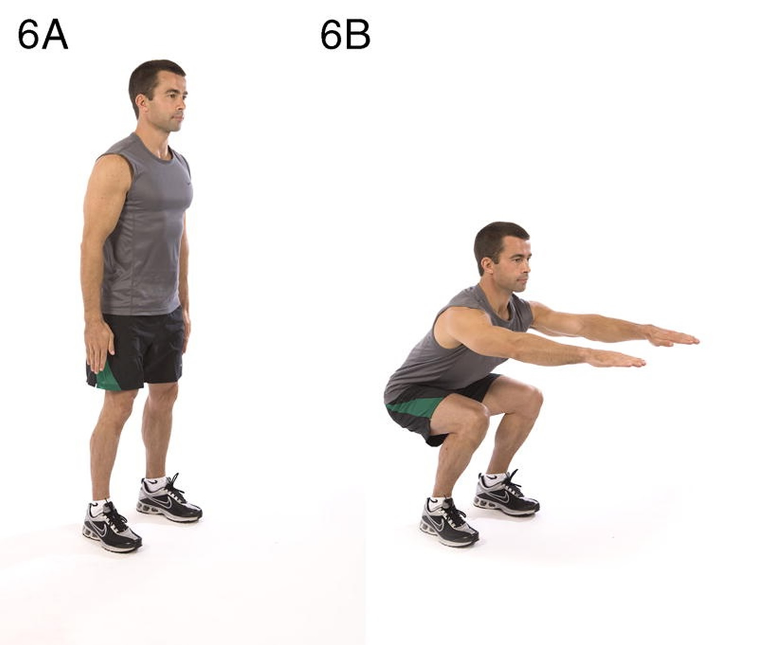 Squat Lower body