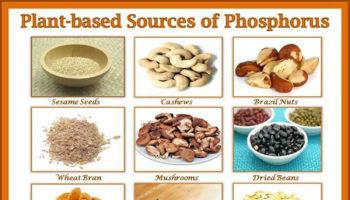 foods high in phosphorus