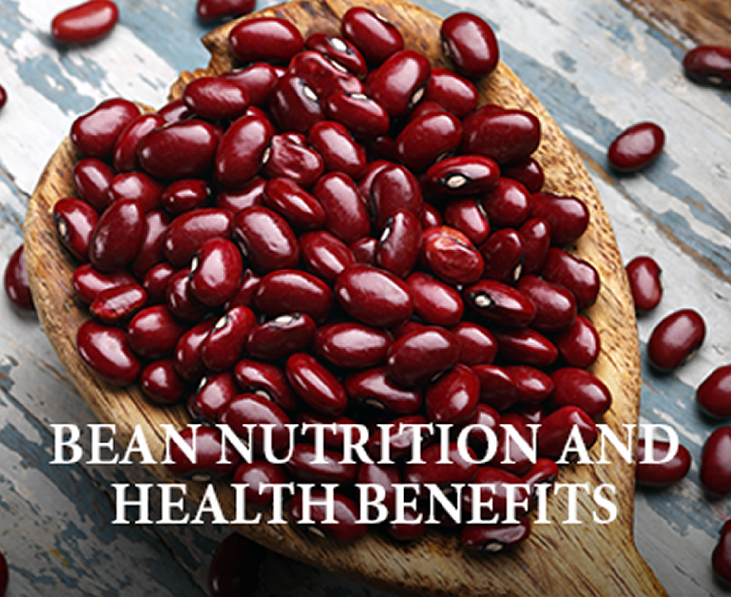 bean nutrition and health benefits