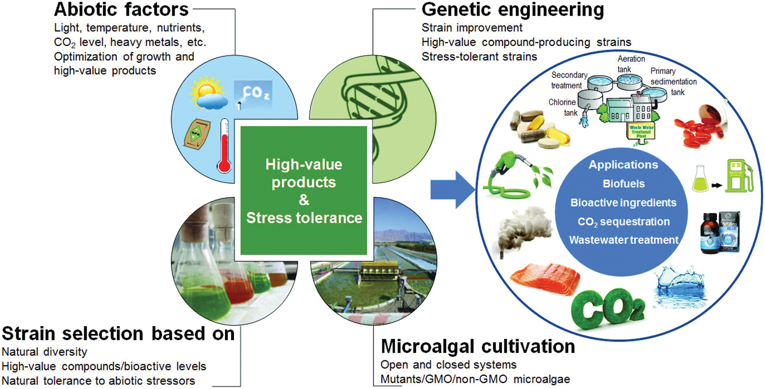 genetic engineering non-food applications