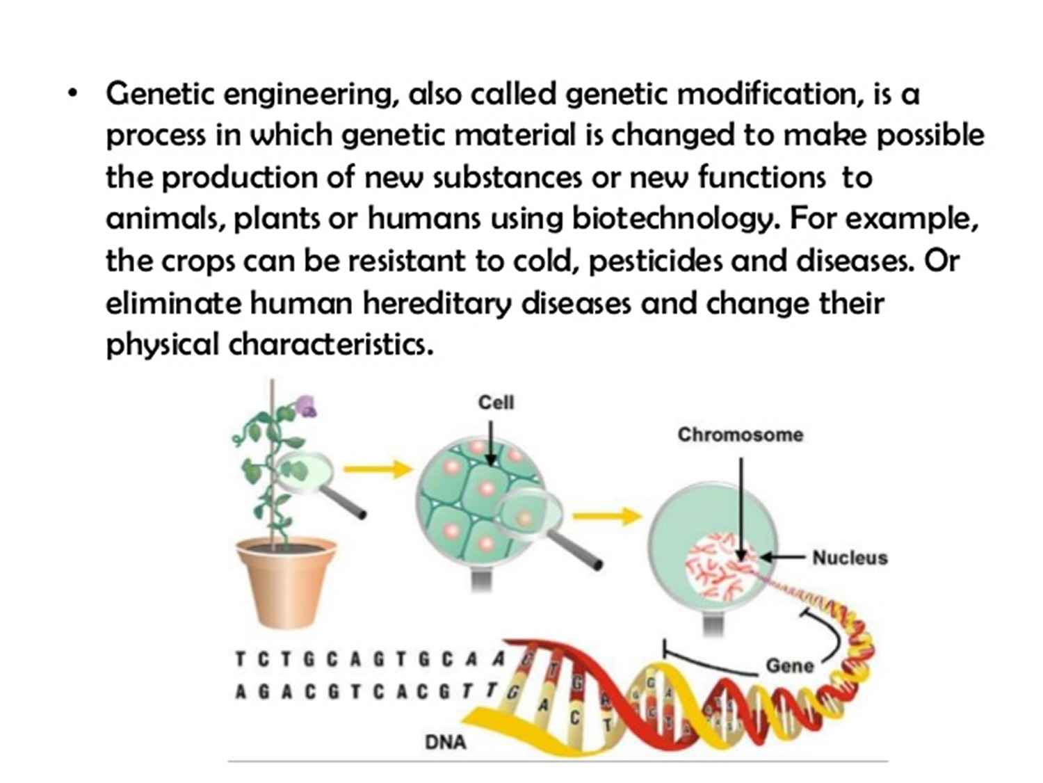 genetic-modification