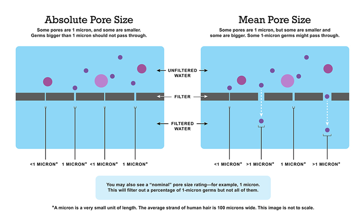 water-filter-pore-sizes