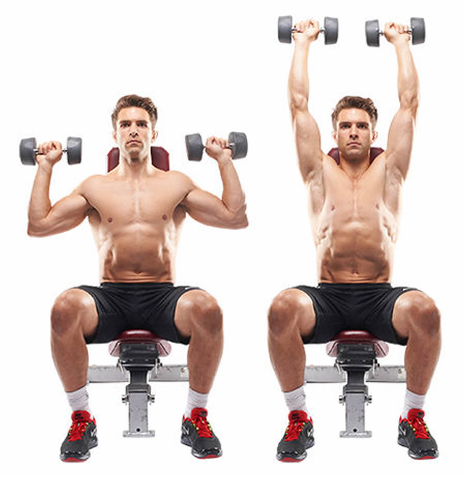 Dumbell Shoulder Press