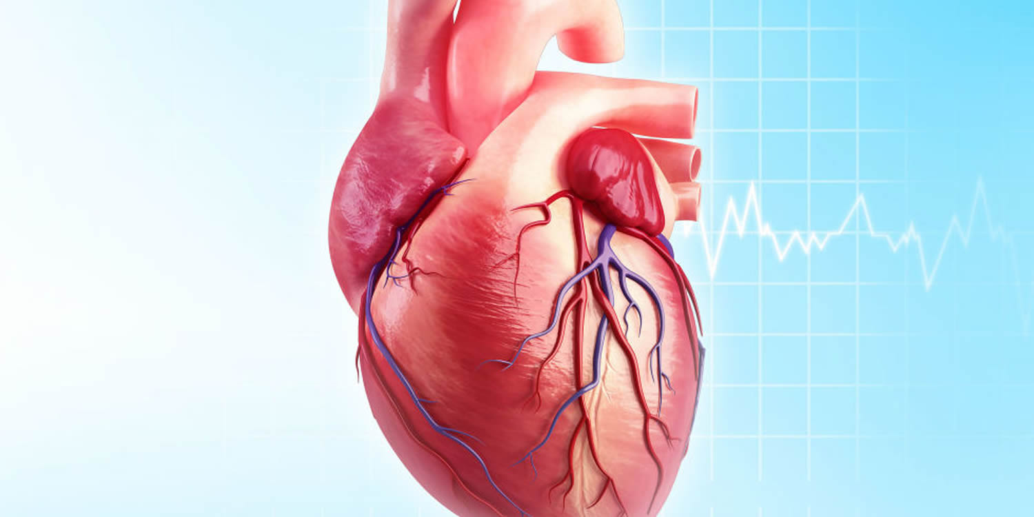 What Is Coronary Heart Disease Causes Signs Symptoms Treatment