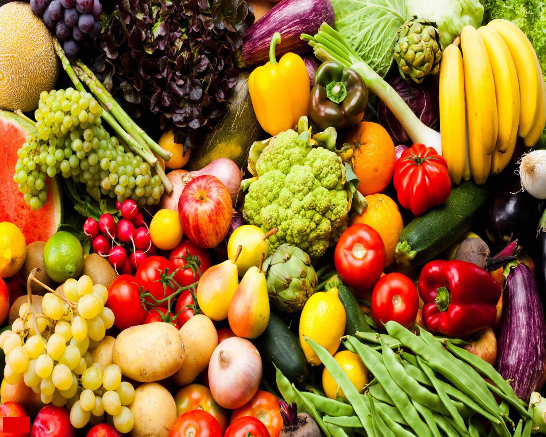 polyphenols rich foods