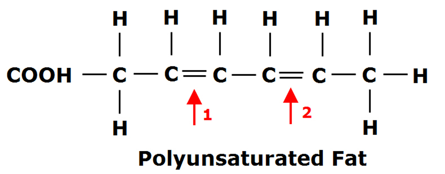 polyunsaturated fatty acids structure