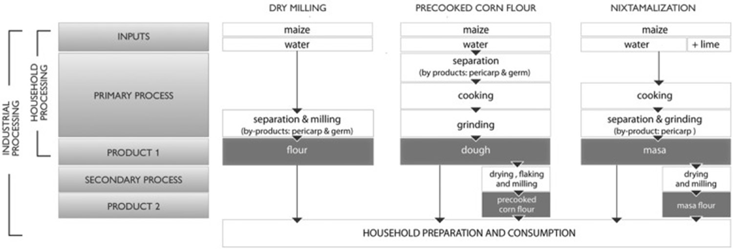dry-milling corn processing
