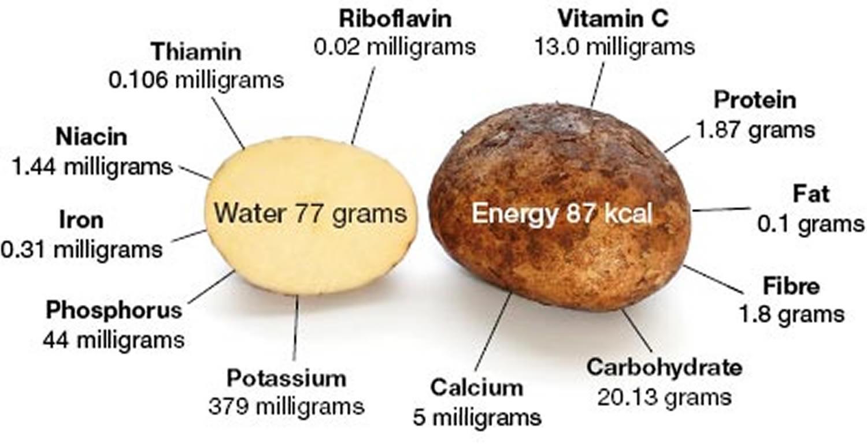 potato nutrition content