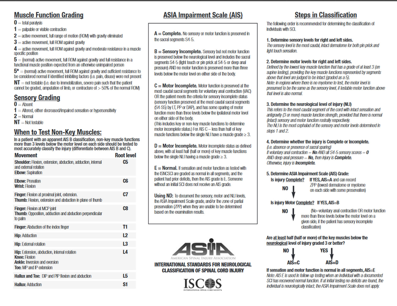 American Spinal Injury Association Impairment Scale