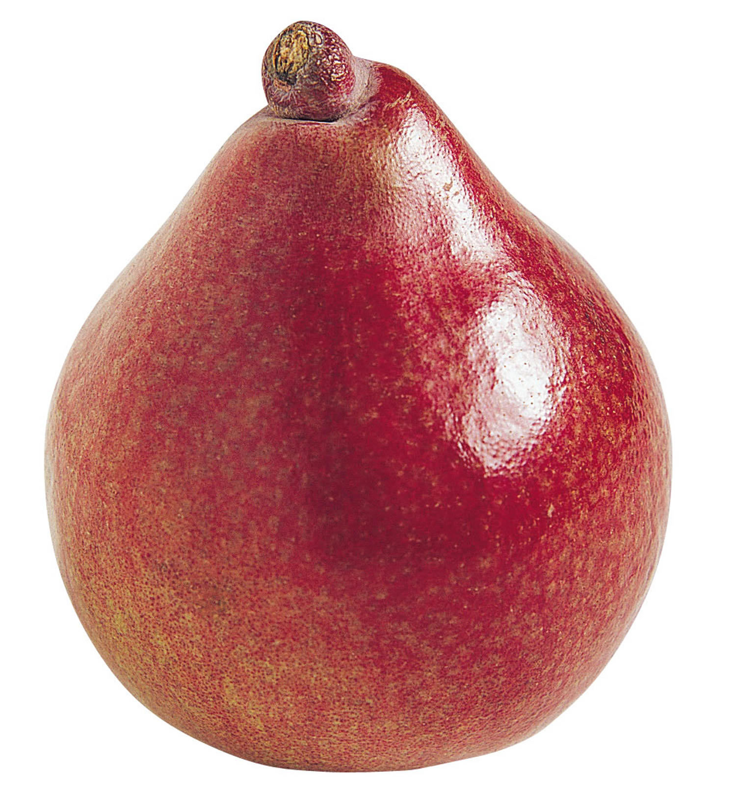 Pear-Red-Anjou