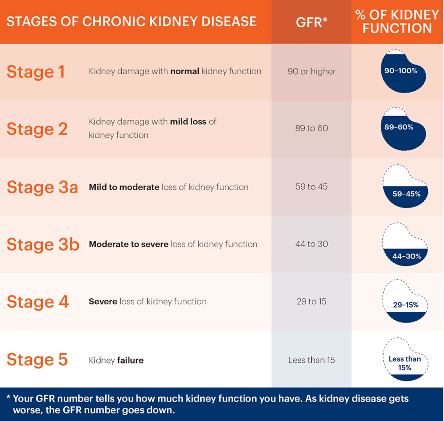 Stages-of-Chronic-Kidney-Disease