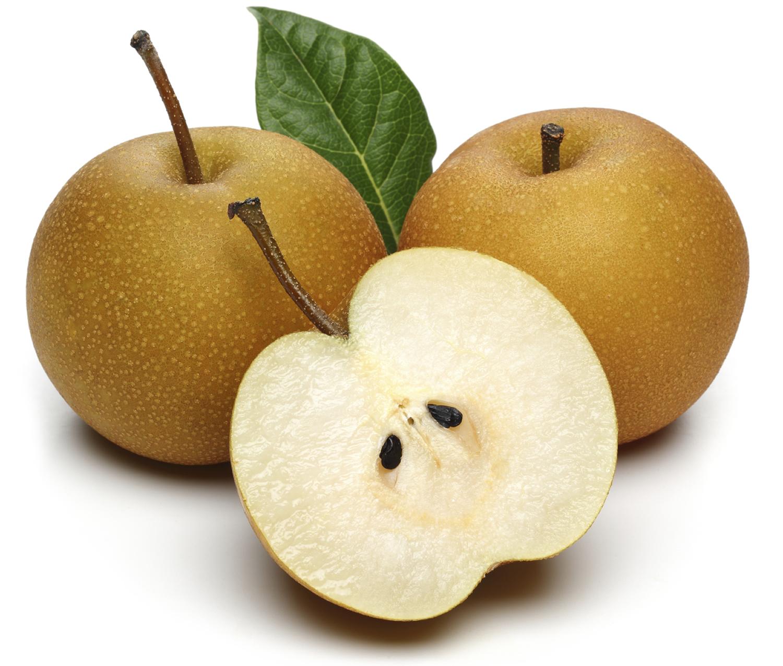 asian nashi pear
