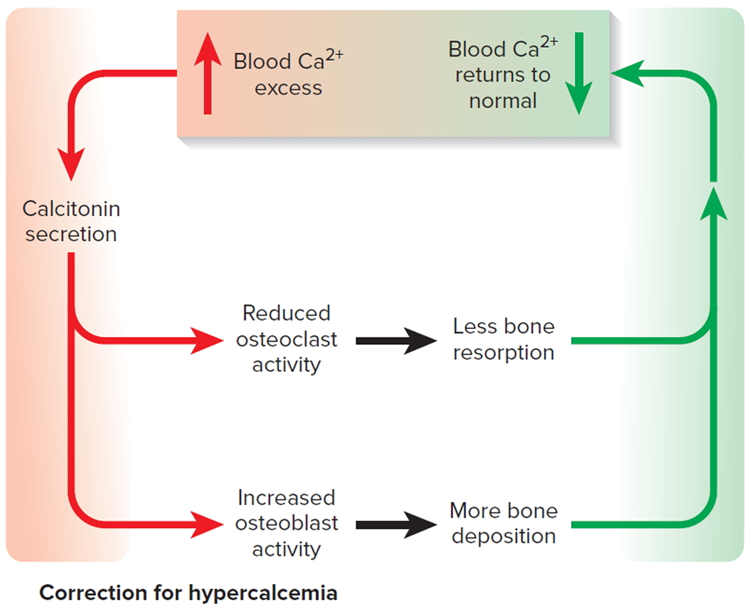correction of high blood calcium