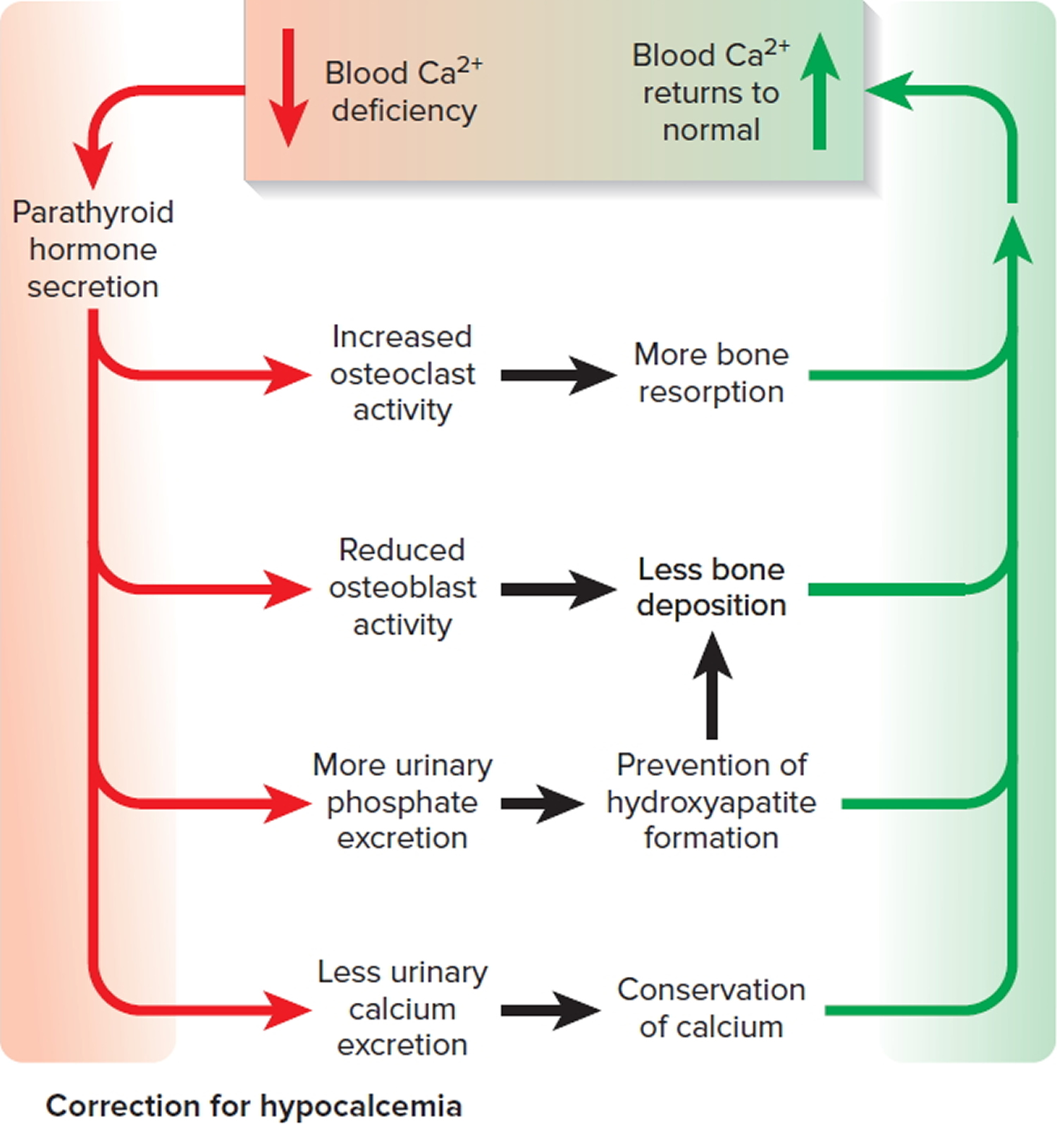 correction of low blood calcium