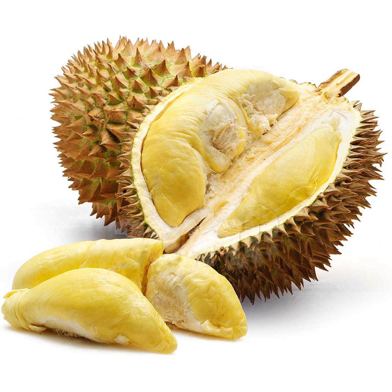 Durian Fruit - Durian Nutrition Facts, Calories, Vitamins ... Jackfruit Vs Durian