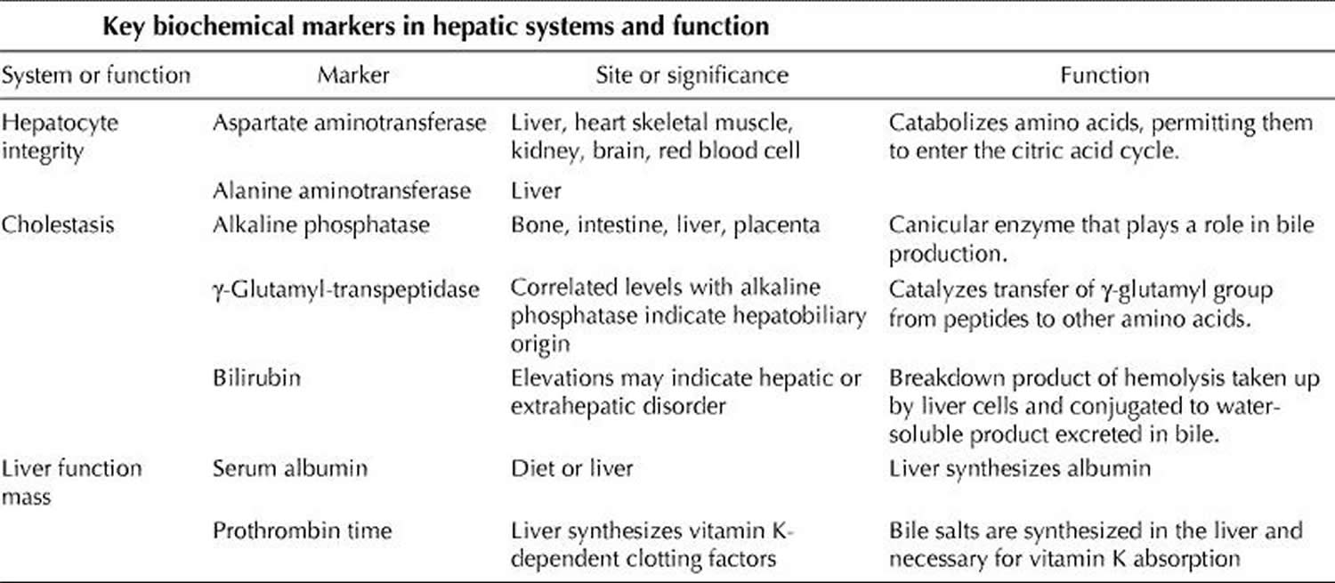 Liver Enzymes Causes Of Elevated Or High Liver Enzymes