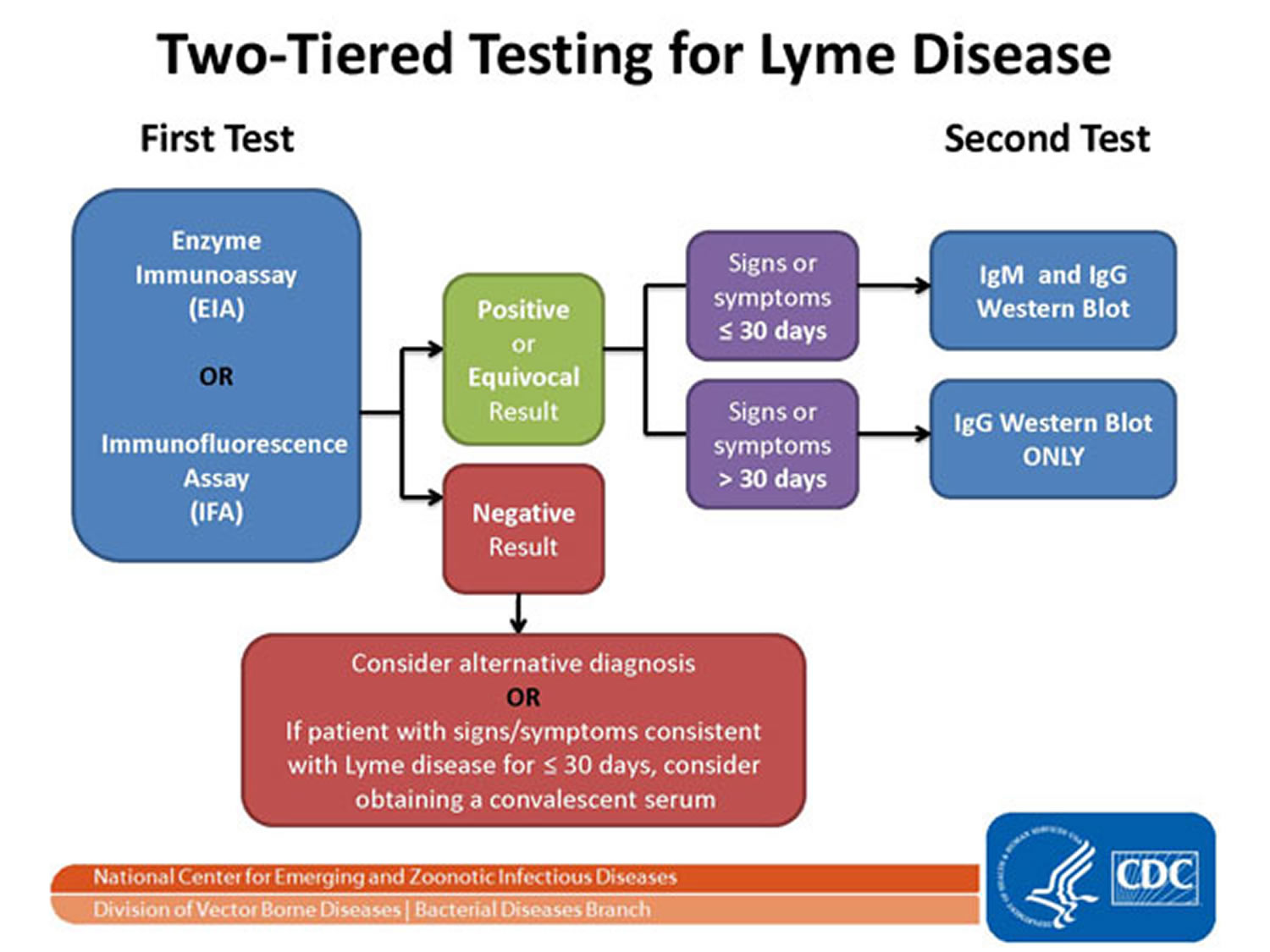two-tiered testing for lyme disease