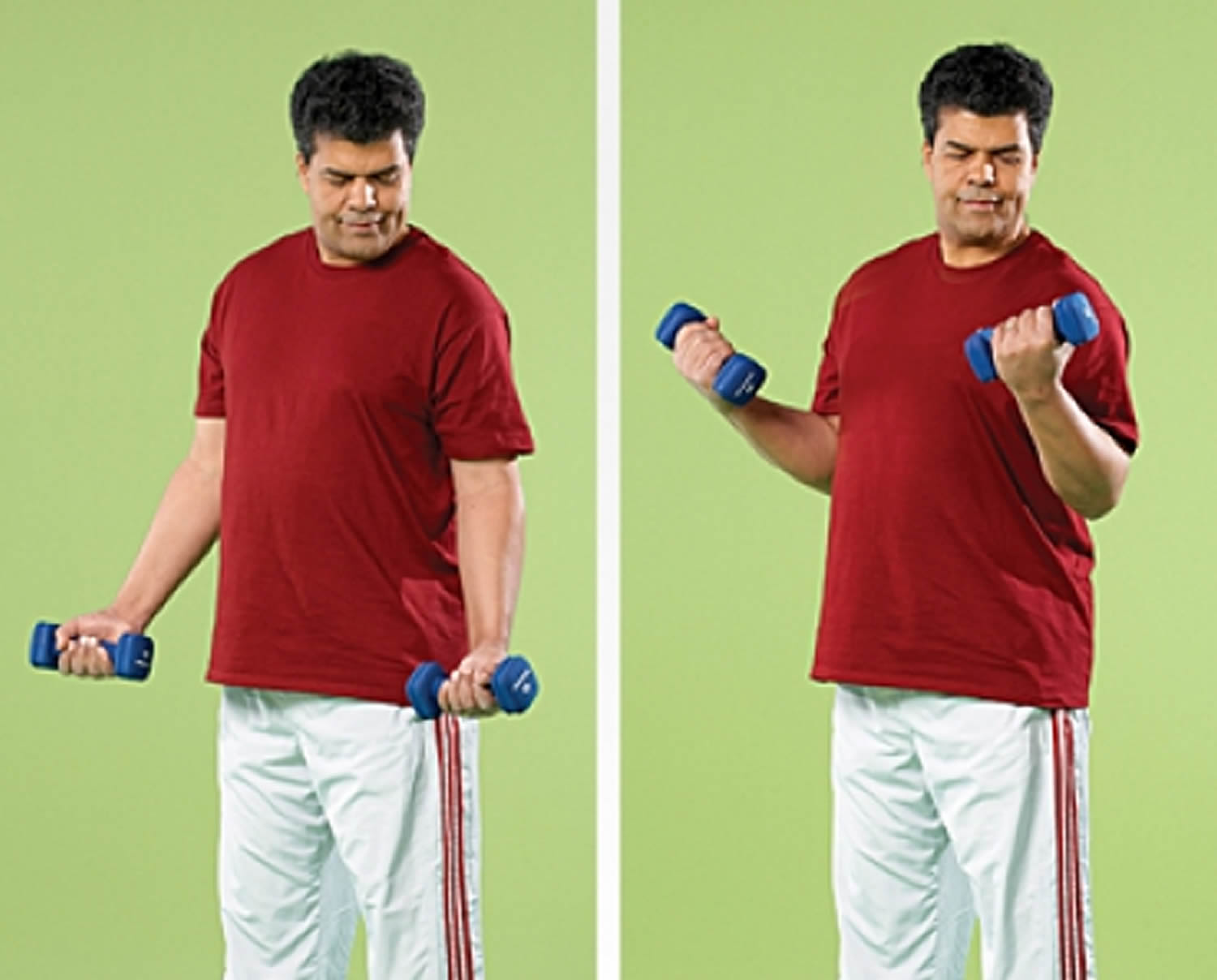 Arm Curl Strength Exercise for Seniors