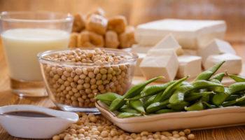 Phytoestrogens foods