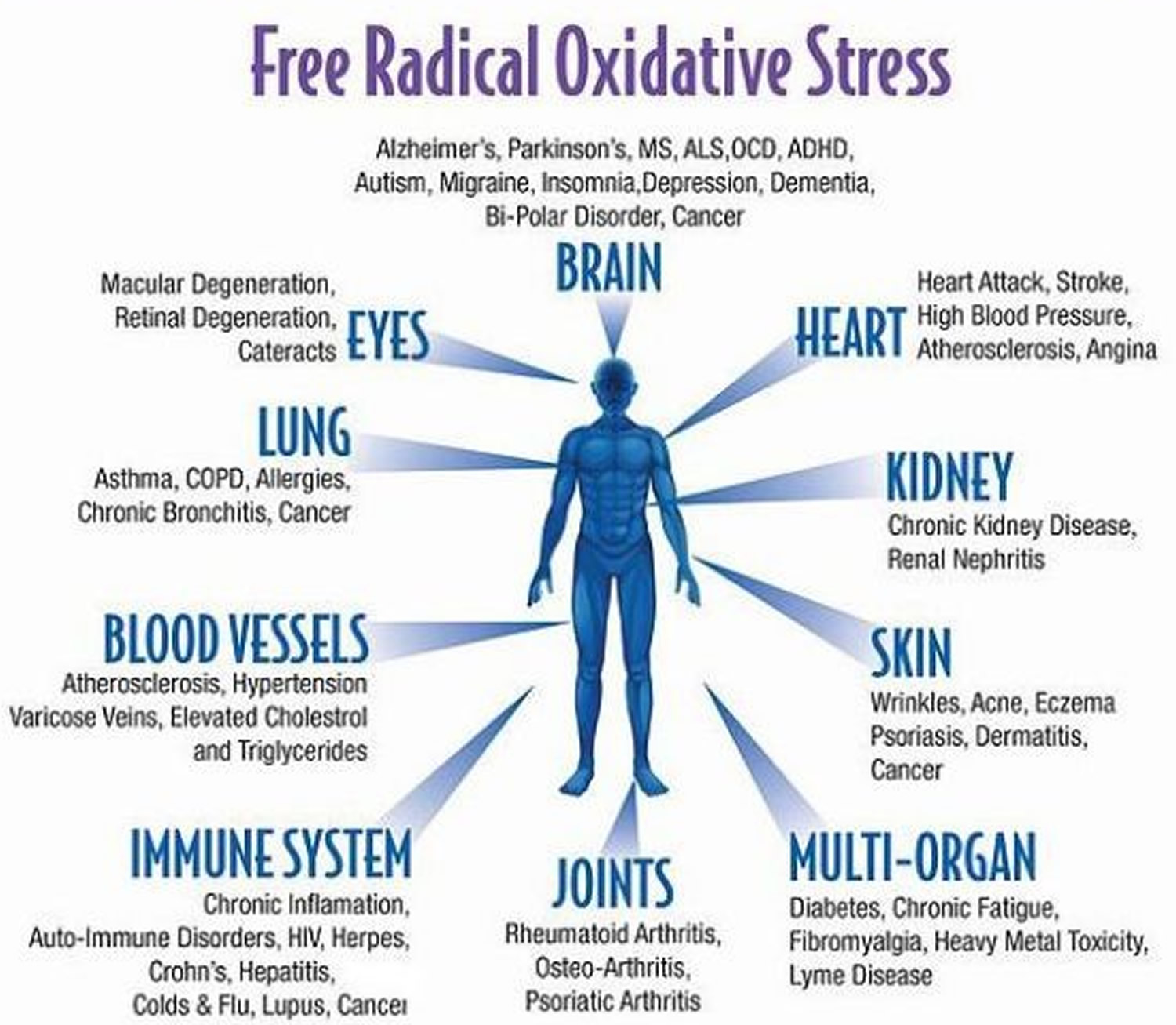 Oxidative Stress - Causes & Symptoms of Oxidative Stress
