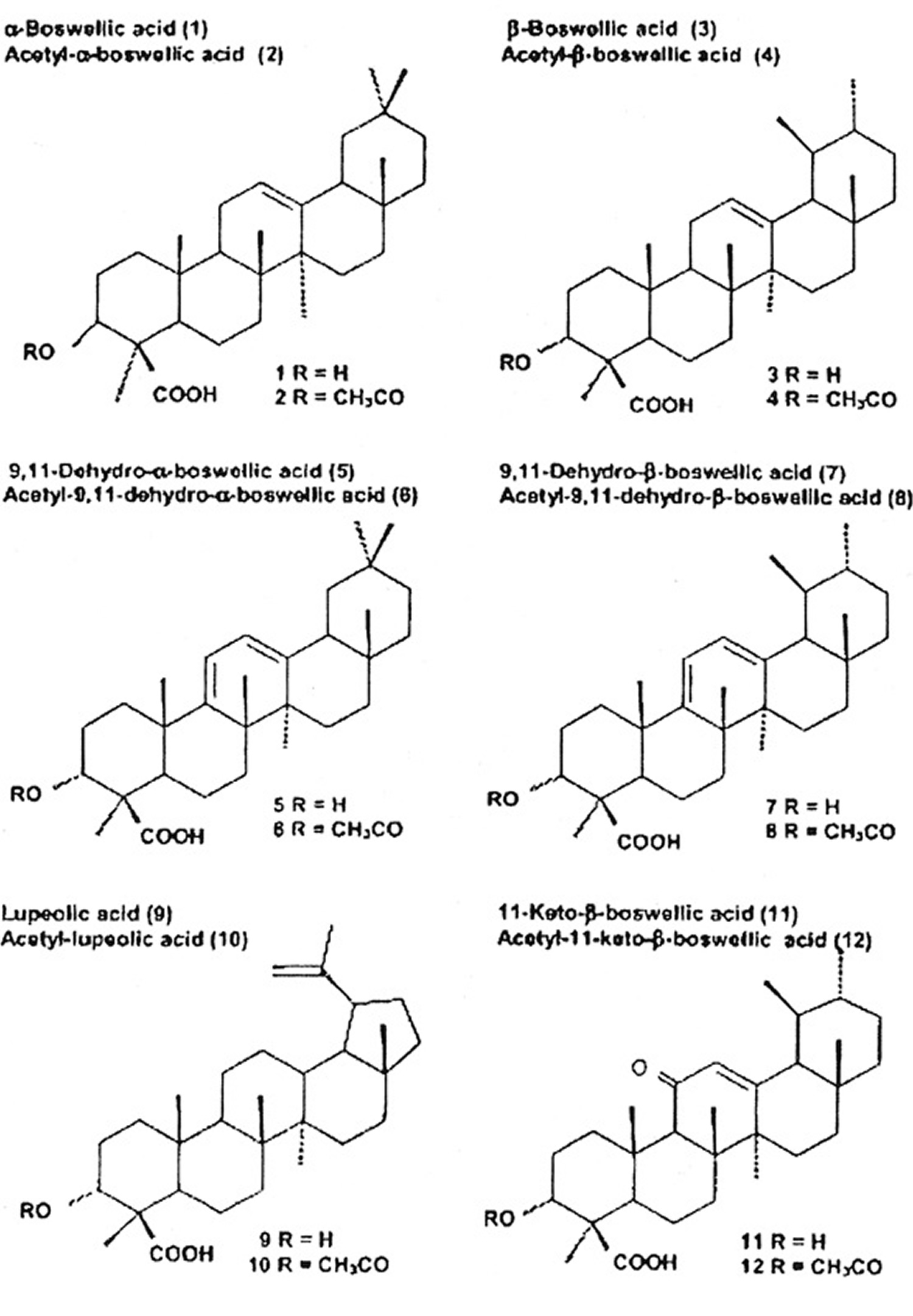 triterpenic acids present in frankincense