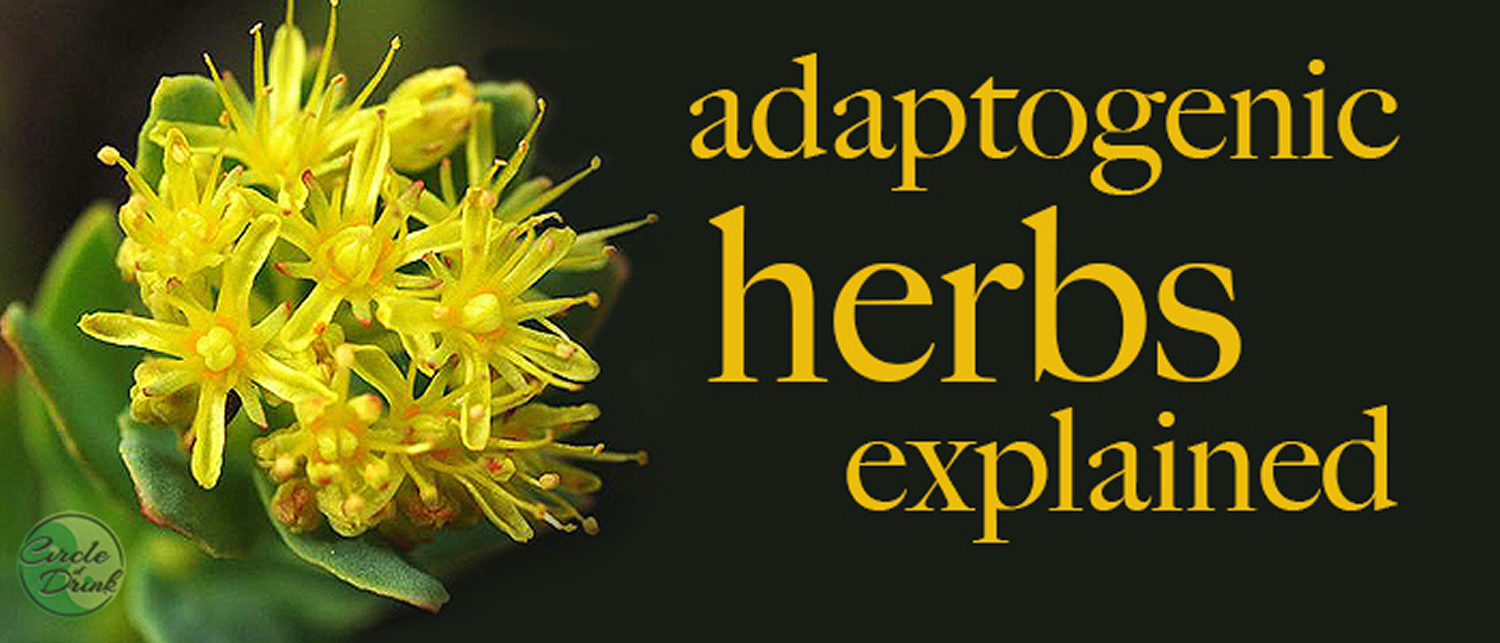 adaptogenic herbs