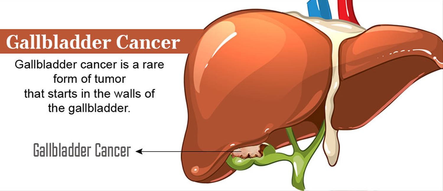 What makes the gallbladder