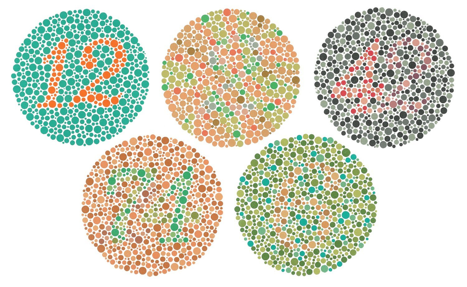Color Blind Types Causes Test Stats Treatment
