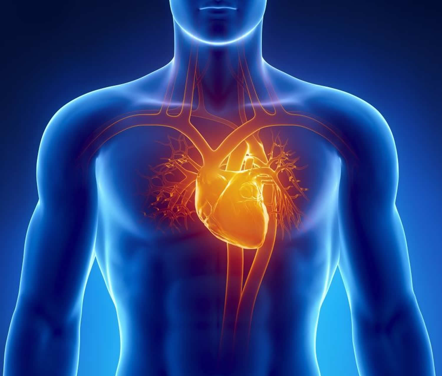 cardiomyopathy causes types life expectancy symptoms treatment