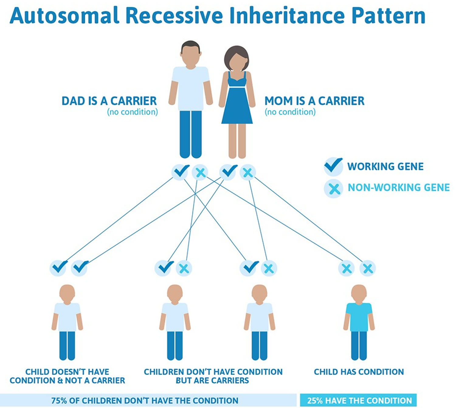Cystic fibrosis autosomal recessive inheritance pattern