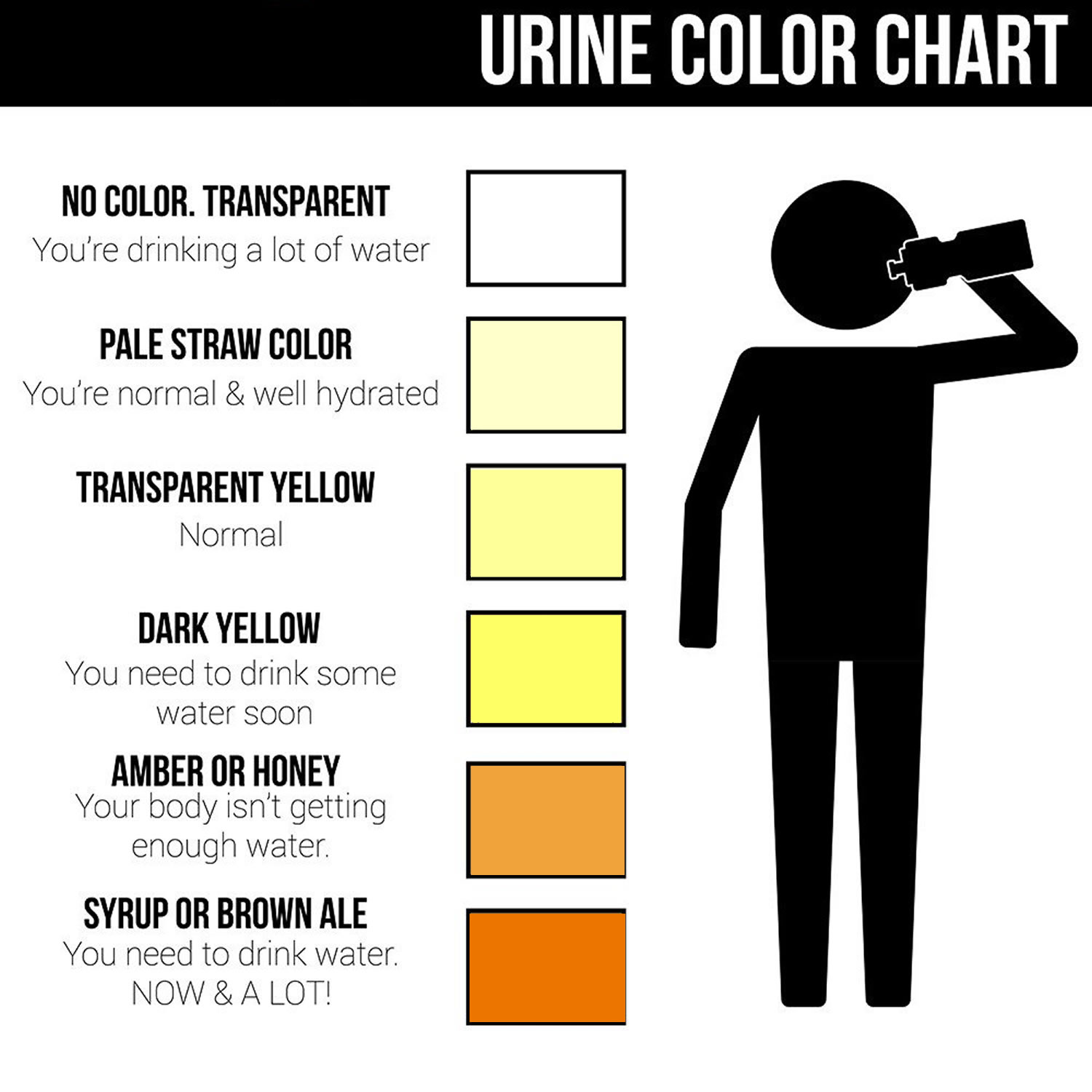 Why is urine dark 67