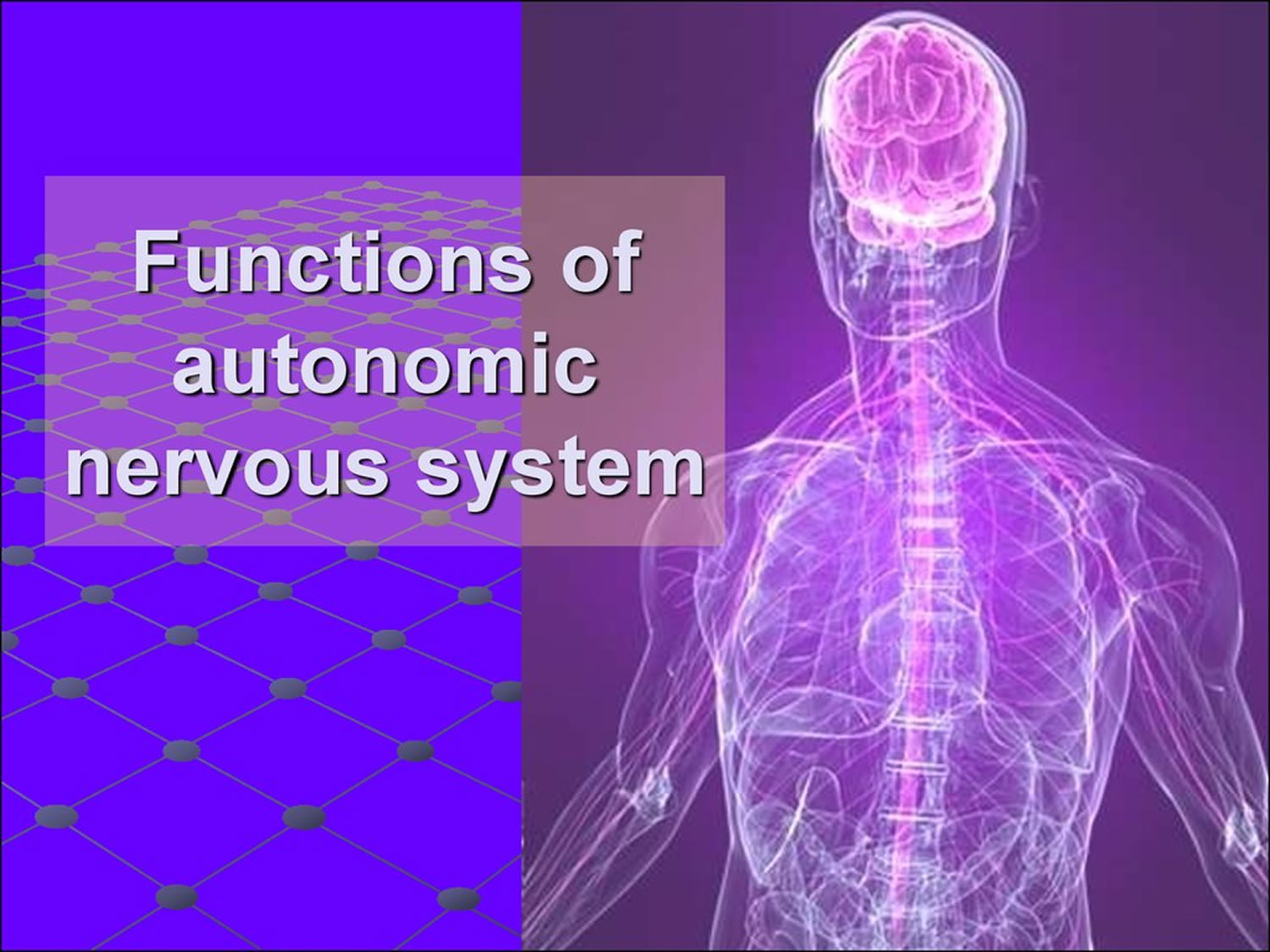 Autonomic Neuropathy Causes Symptoms Diagnosis Treatment