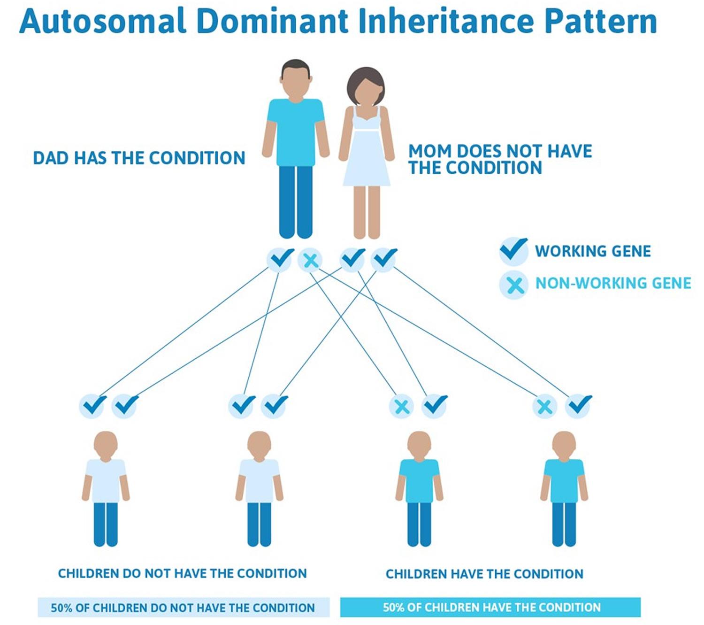Familial hypercholesterolemia autosomal dominant inheritance pattern