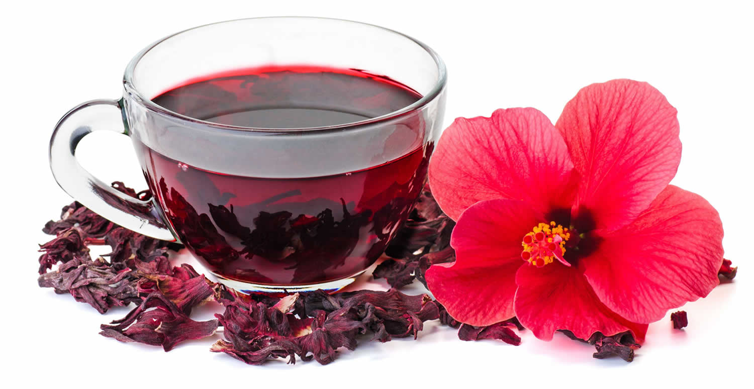 Hibiscus Tea Uses For Blood Pressure Blood Cholesterol