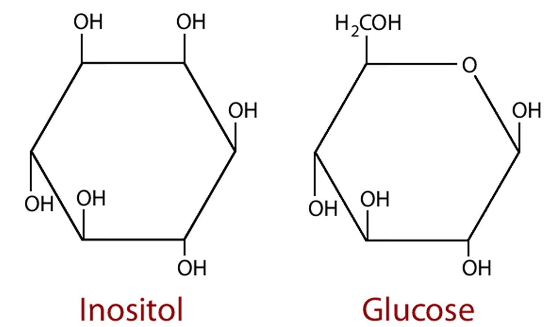 Inositol Reviews - Myo-Inositol, Benefits, Inositol Side Effects