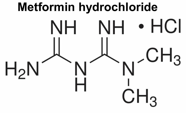 Metformin And Metformin Hcl Uses Dosage Contraindications Side