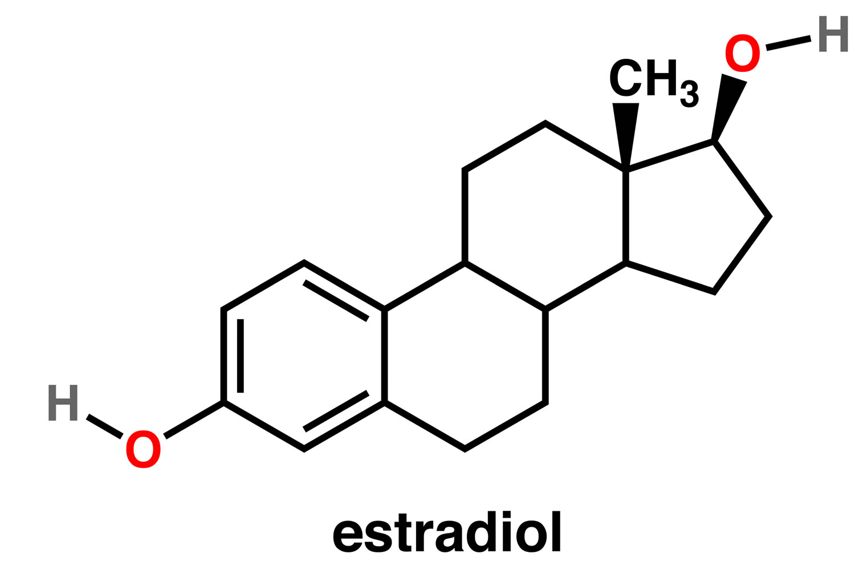 Estradiol Function Normal Estradiol Levels Uses Test Dosage