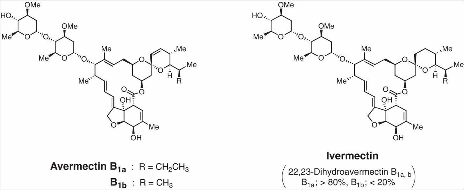 ivermectin for humans