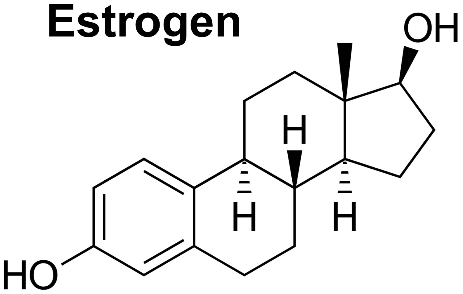 Estrogen function, pills, foods, estrogen blocker and estrogen ...