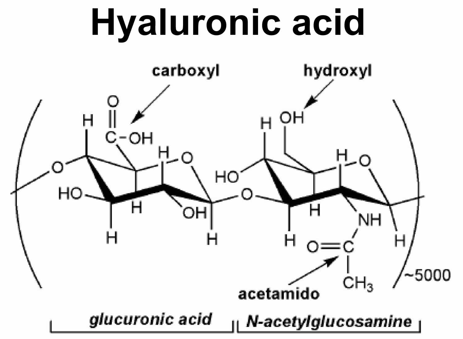 Hyaluronic Acid Reviews For Joint And Skin Injections