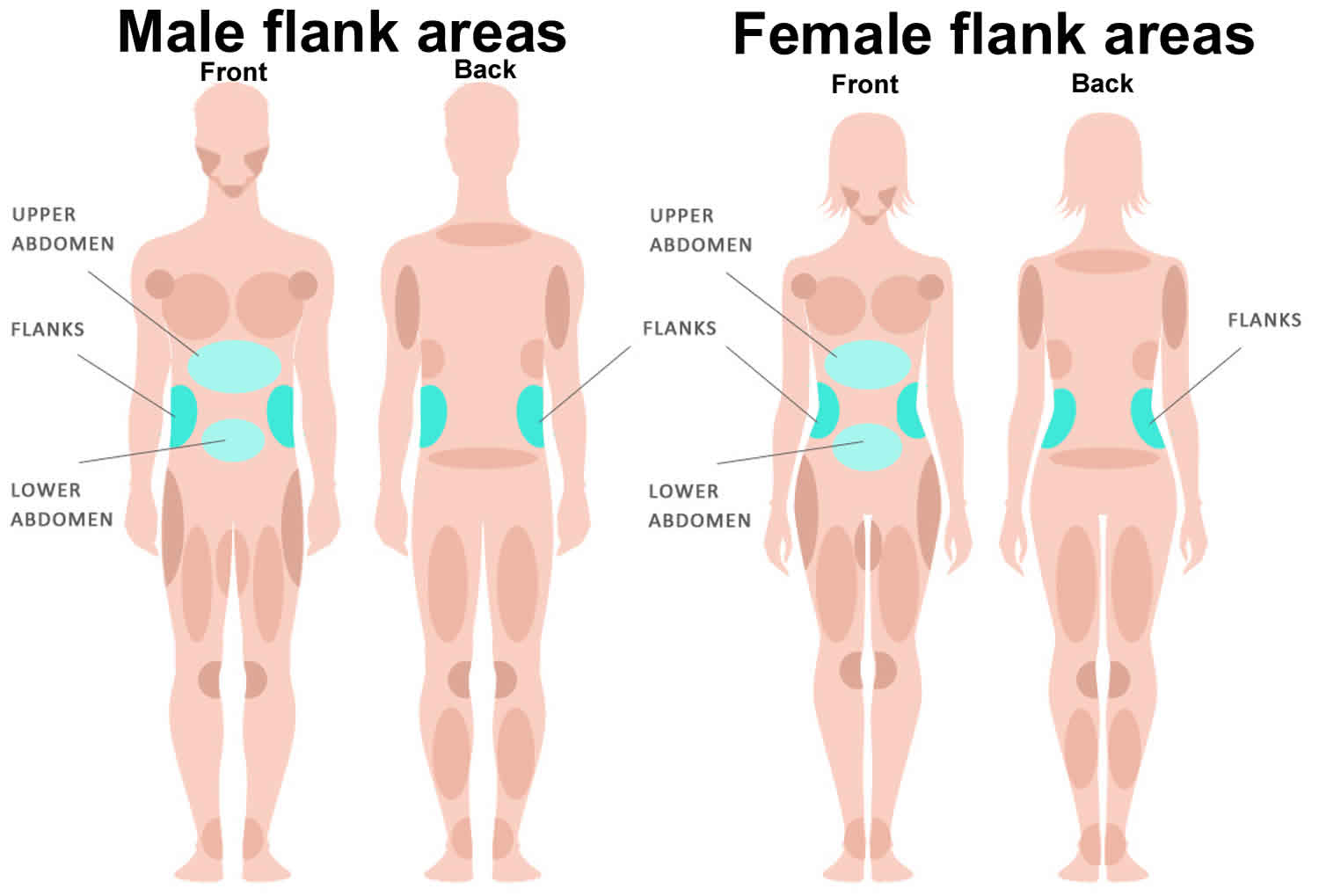 Flank Pain Cause Left Flank Pain Causes And Right Flank Pain Causes