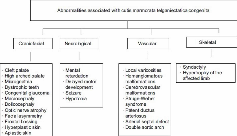 abnormalities associated with cutis marmorata telangiectatica congenita