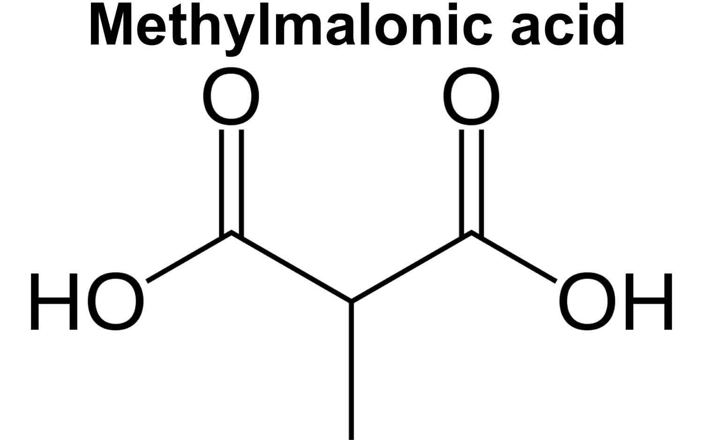 methylmalonic acid