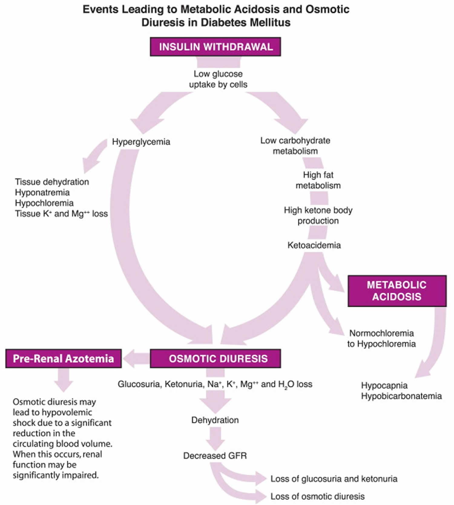 osmotic diuresis diabetes